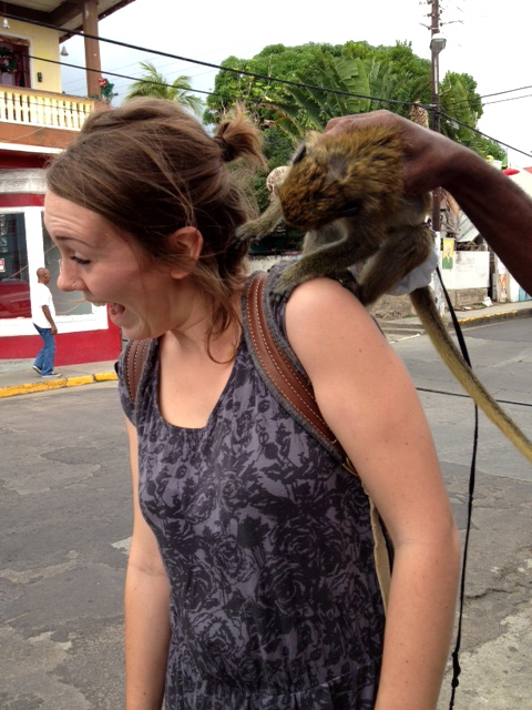 In St. Kitts being _attacked_ by a monkey in a diaper during a Trail of Seeds project