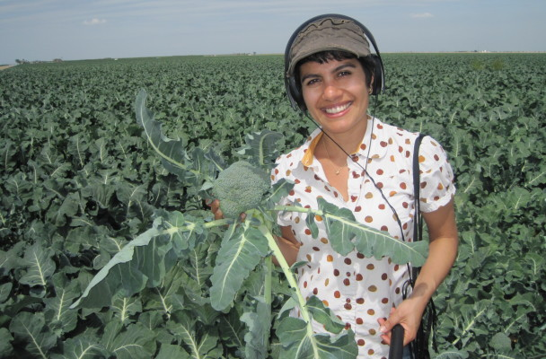 Farida Jhabvala Romero reporting in Mendota, CA broccoli field