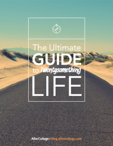 twentysomething life ebook cover